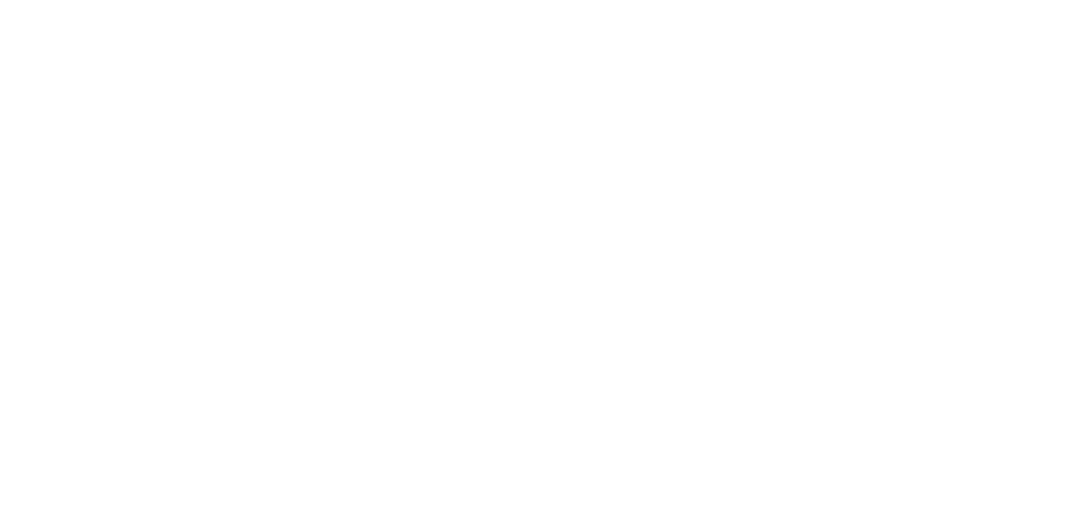 Blue Pen Publishing Services
